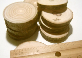 20 Tree Branch Slices 1 to 1.5 inch