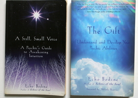 Two Echo Bodine Books