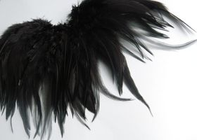 30 Black Sleek Shiny and Peacock Feathers for Crafts, Jewelry Making, Scrap Booking, Weddings etc...