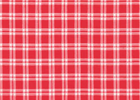 3 Yards Quilt Cotton Fabric- Lakehouse Valentines Red Pink Plaid