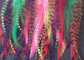 "35 Colored Mix Rooster Feathers, 5"" to 7"""