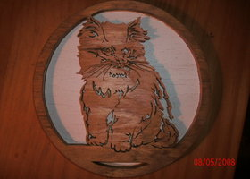 kitten plaque
