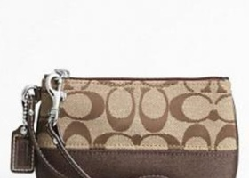 Coach Signature Stripe Small Wristlet in Brown/Khaki