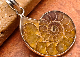 "1 1/4"" Natural Ammonite Fossil Solid 925 Silver Pendant"