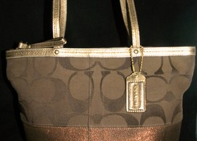 Coach 13548 Signature Striped Brown/Brown Tote