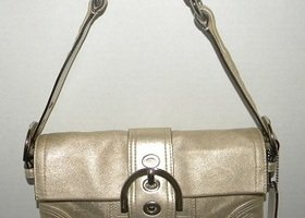 Coach Metallic Goat Suede Demi Bag