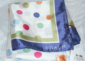 Coach F8321 Silk Dot Scarf