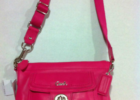 Coach Pink Leather Pocket Swing Pack Cross Body  45012