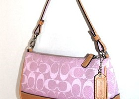 Coach Signature Demi Shoulder Bag 6094