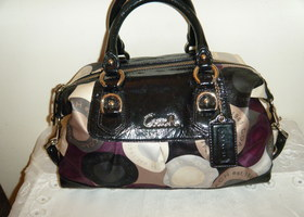 Coach Ashley Snaphead Satchel