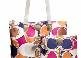 Your Choice-NWT Coach Getaway Packable Tote Set-F77322