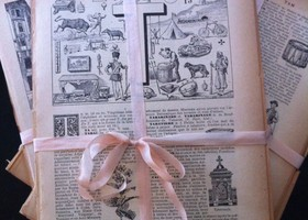 Gorgeous French Illustrated Dictionary Pages - great fo