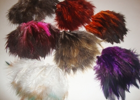 100 Beautiful Fluff Feathers