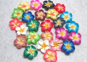 25 Plumeria Polymer Flowers Color Mix!