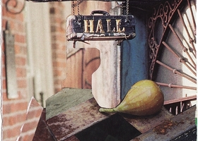 A Fig at Preservation Hall