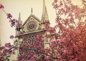 Paris in the Spring - 8x10 Photograph