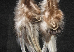 Handmade Tan Feather Earrings