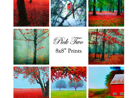 Pick Any Two - 8x8 Prints