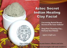 Aztec Secret Indian Healing Rosewater Clay Facial